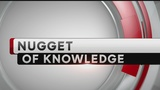 Nugget of Knowledge: Random Facts