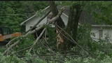 Survey team to look over storm damage in Trumbull County