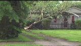 Residents in one Warren neighborhood come together to clean up storm damage